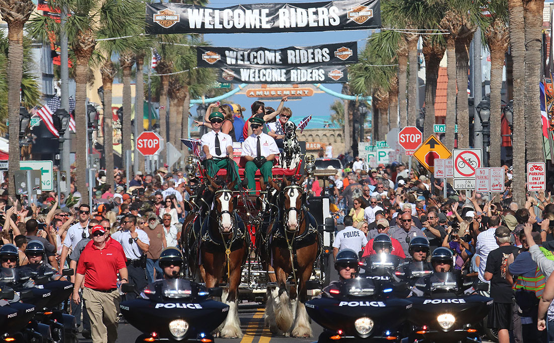 The worlds famous Clydesdales parade down Main Street in Daytona Beach thrilling thousands of bikers in town for Bike Week Saturday March 11, 2017. [News-Journal/JIM TILLER]